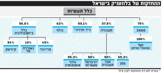 ההחזקות של בלווטניק בישראל