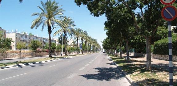 רחוב הרצל באשדוד / צילום: יחצ