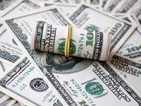 דולרים מטבע חוץ מטח  / צלם: טינקסטוק