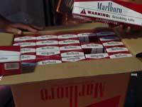 תפיסת מכולת סיגריות במכס / צילום: דוברות המכס