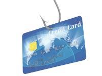 כרטיס אשראי / צילום:  Shutterstock/ א.ס.א.פ קרייטיב
