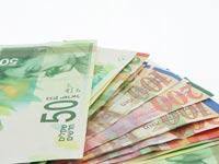 שטרות, שקלים, כסף ישראלי / צילום: שאטרסטוק
