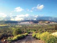 טורעאן / צילום: Narenkh, ויקיפדיה