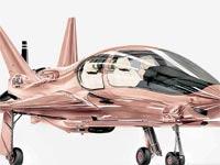 מטוס פרטי בצבע זהב / צילום: יחצ