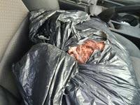 בשר מוברח מהרשות הפלשתינאית / צילום: המועצה לענף הלול