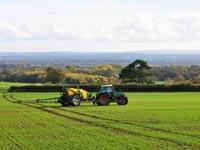 קרקעות חקלאיות / צילום: Shutterstock א.ס.א.פ קרייטיב