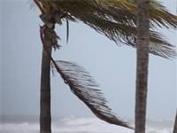 """הוריקן """"אירמה"""" מכה בפלורידה/ רוייטרס"""