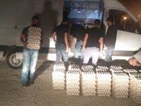 תפיסת הברחת ביצים ברשות הפלסטינית/צילום: המועצה לענף הלול