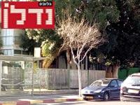 """רחוב הרוגי מלכות / צילום: יח""""צ"""