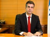 שר הכלכלה אלי כהן / צילום: דודי ועקנין