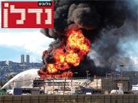 שריפה במפרץ חיפה / צילום: רויטרס