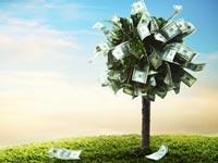 ניהול תיק השקעות דרך הבנק? הרווח כולו שלך