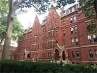 אוניברסיטת הרווארד / צילום: שאטרסטוק
