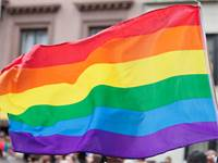 דגל הגאווה / צילום: שאטרסטוק
