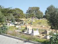בית הקברות ביפו /  צילום: איל יצהר