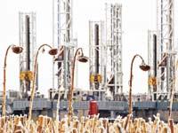 קידוח נפט בצפון דקוטה / רויטרס / Andrew Cullen