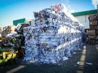 מפעל נייר חדרה / צילום: שלומי יוסף