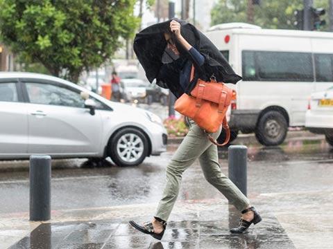 סופה, מזג אוויר חורפי, הפסקות חשמל / צילום: וואלה News