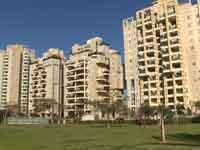 צפו: העיר שהפכה לפנינת הנדל