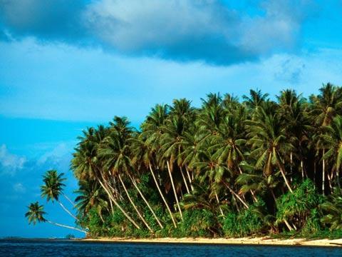 הגרלה לזכייה באי, אוסטרליה, מיקרונזיה, הגרלות  island of Kosrae/ צילום: וידאו
