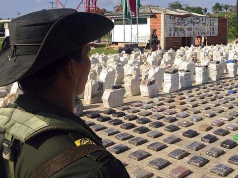 הרשויות בקולומביה החרימו 8 טון של קוקאין בשווי 240 מיליון דולר / צילום: רויטרס