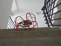 רובוט תרנגול, צילום:יחצ