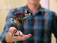 פורץ דרך: אבטיפוס לרובוט חדש שינתר לגבהים אדירים