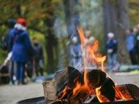 קוביית אש אופציה 2 / צילום: shutterstock