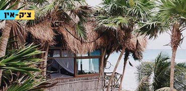 חוף ים פרטי וג'ונגל סביב: מלון סוויטות כזה עוד לא ראיתם
