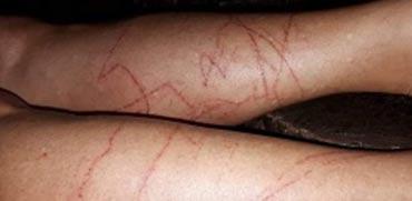 מפחיד: צפו בתופעה המסוכנת שבחופי תאילנד מנסים להסתיר