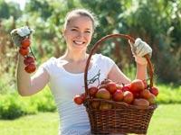 שמתם לב מה השתנה בעגבניות שכולנו אוכלים? צפו בוידאו