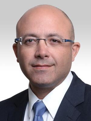 דולב אמיר