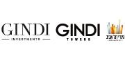 קבוצת גינדי | לוגו