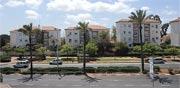 """רמ""""י שיווקה קרקע לבניית 240 דירות באור-עקיבא/אור עקיבא / צילום: איל יצהר"""
