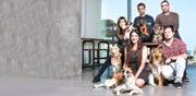 עובדי אוטודסק והכלבים / צילום: ענבל מרמרי