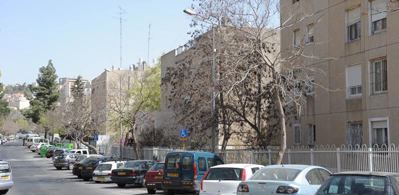 שכונת קרית היובל בירושלים / צילום: איל יצהר