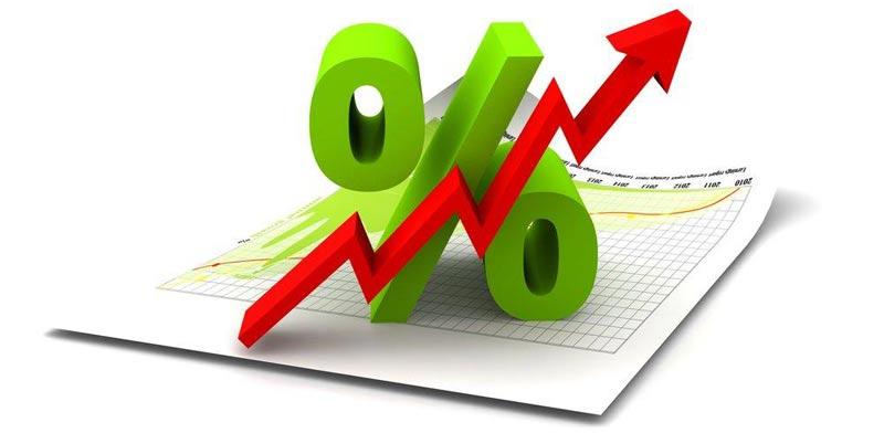 %u05E8%u05D9%u05D1%u05D9%u05EA%20/%20%u05E6%u05D9%u05DC%u05D5%u05DD%3A%20%20Shutterstock/%20%u05D0.%u05E1.%u05D0.%u05E4%20%u05E7%u05E8%u05D9%u05D9%u05D8%u05D9%u05D1