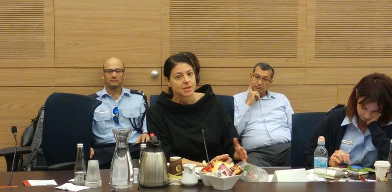 מירב מיכאלי בוועדה לקידום מעמד האישה / צילום: דנאי מרקס כלף