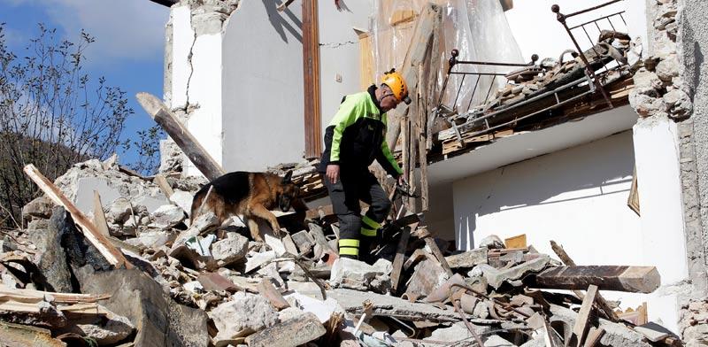 חיפוש אחר נעדרים ברעידת אדמה במרכז איטליה / צילום:רויטרס