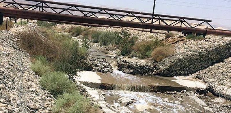 השפכים הזורמים בנחל אשלים / צילום: עודד נצר, אקולוג מחוז דרום, המשרד להגנת הסביבה