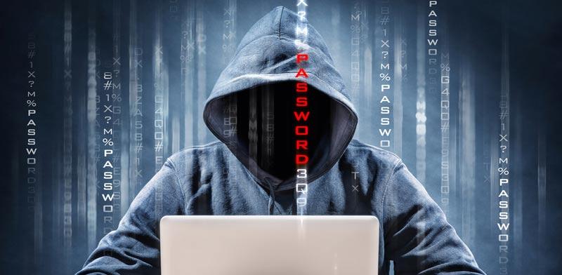 כך תגנו על עצמכם מפני התקפת סייבר / צילום: Shutterstock/ א.ס.א.פ קרייטיב