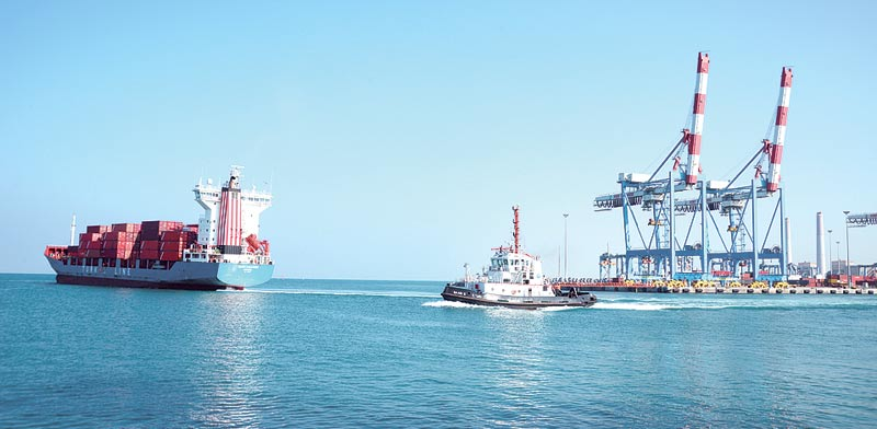 גוררת ואוניית מטען בנמל אשדוד / צילום: איל יצהר