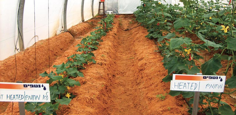 The company developed an energy-saving system for heating and cooling crop roots.