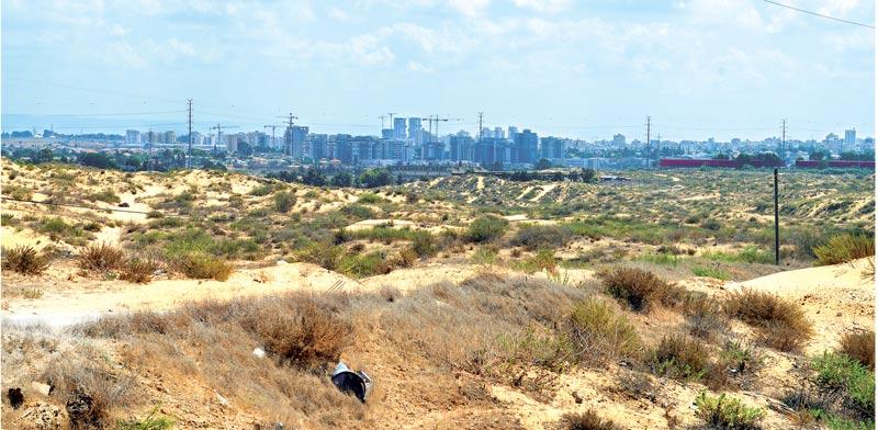 קרקעות במזרח חולון / צילום: תמר מצפי
