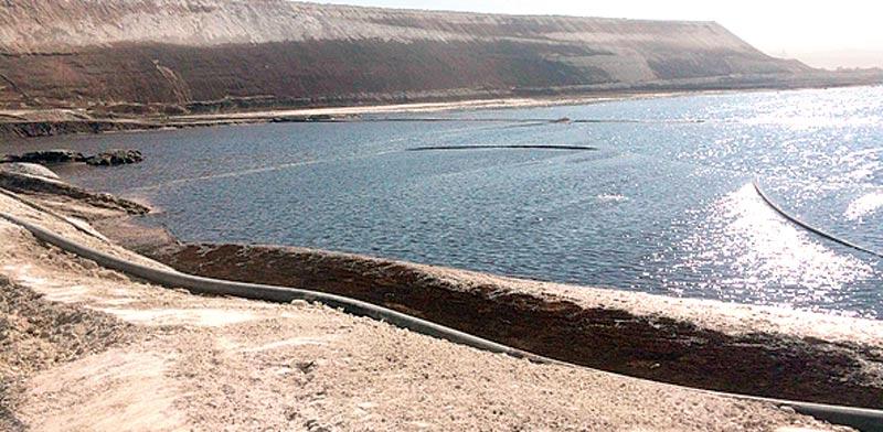 האסון האקולוגי באשלים. לשמור על בעלי החיים / צילום: עודד נצר - המשרד להגנת הסביבה