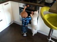 חתול מגן על ילד מתנור חם / מתוך: צילום מסך יוטיוב