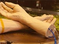 גוגל חיקוי לעור יד תותבת / צילום: וידאו