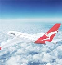 מטוס של חברת התעופה האוסטרלית קוואנטס / צילום: שאטרסטוק