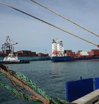 נמל חיפה. המכרז יוצא לדרך בזמנים קשים לענף הספנות / צילום: איל יצהר, גלובס