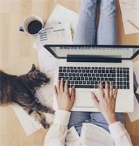 כמו לכל דבר, גם לעבודה מהבית יתרונות וחסרונות / צילום: Shutterstock/א.ס.א.פ קרייטיב